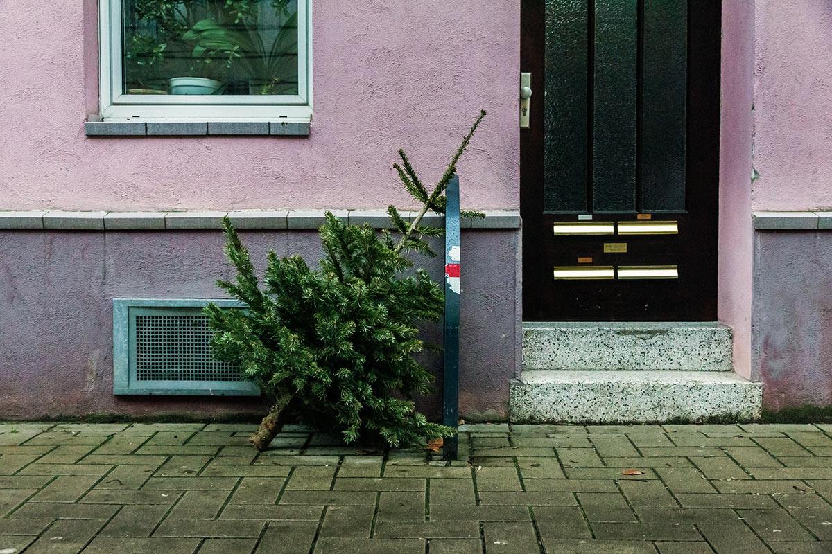leb wohl weihnachtsbaum so entsorgen sie ihren. Black Bedroom Furniture Sets. Home Design Ideas
