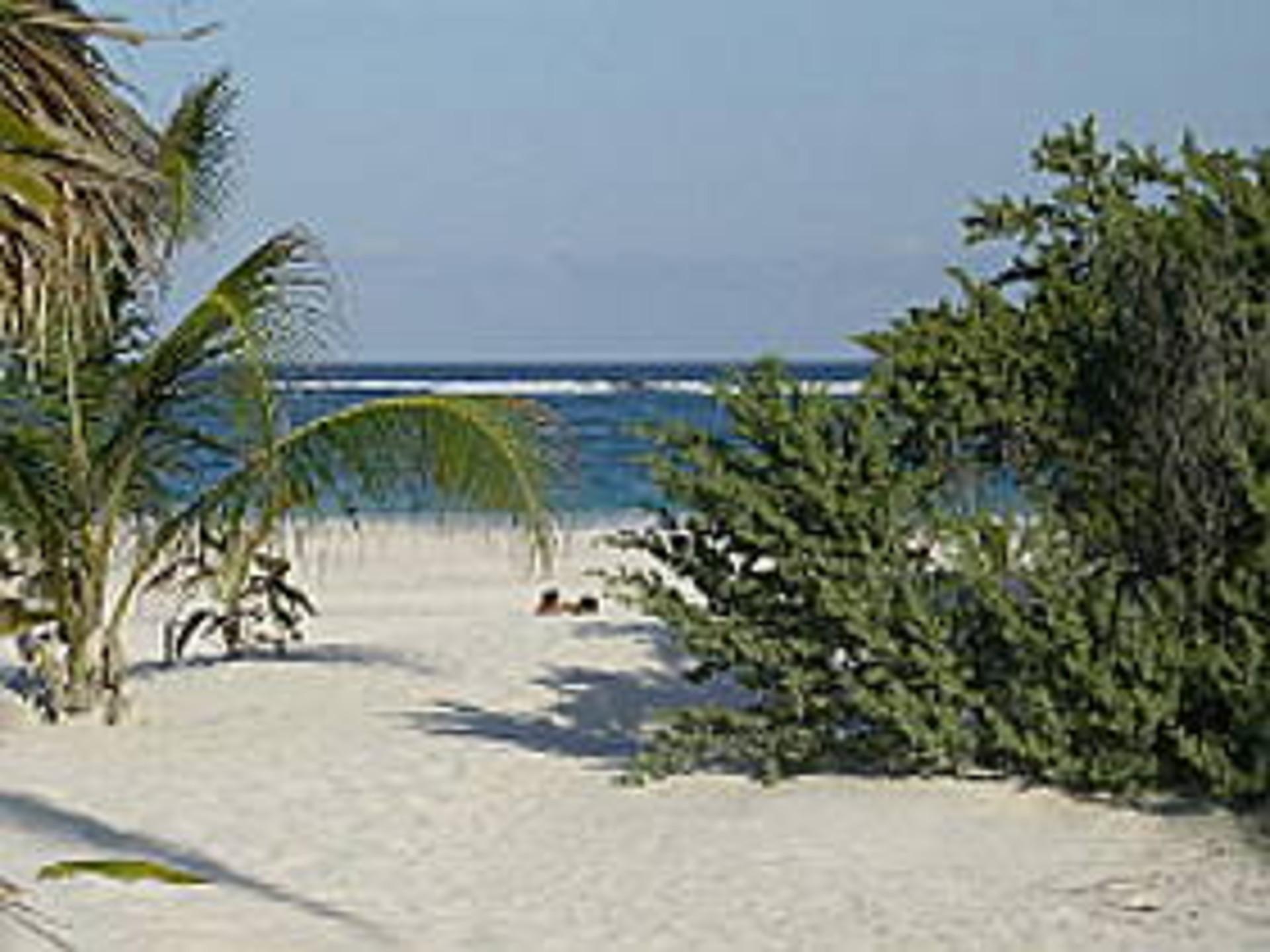 mexiko mexiko yukatan hat den sch nsten strand der welt. Black Bedroom Furniture Sets. Home Design Ideas