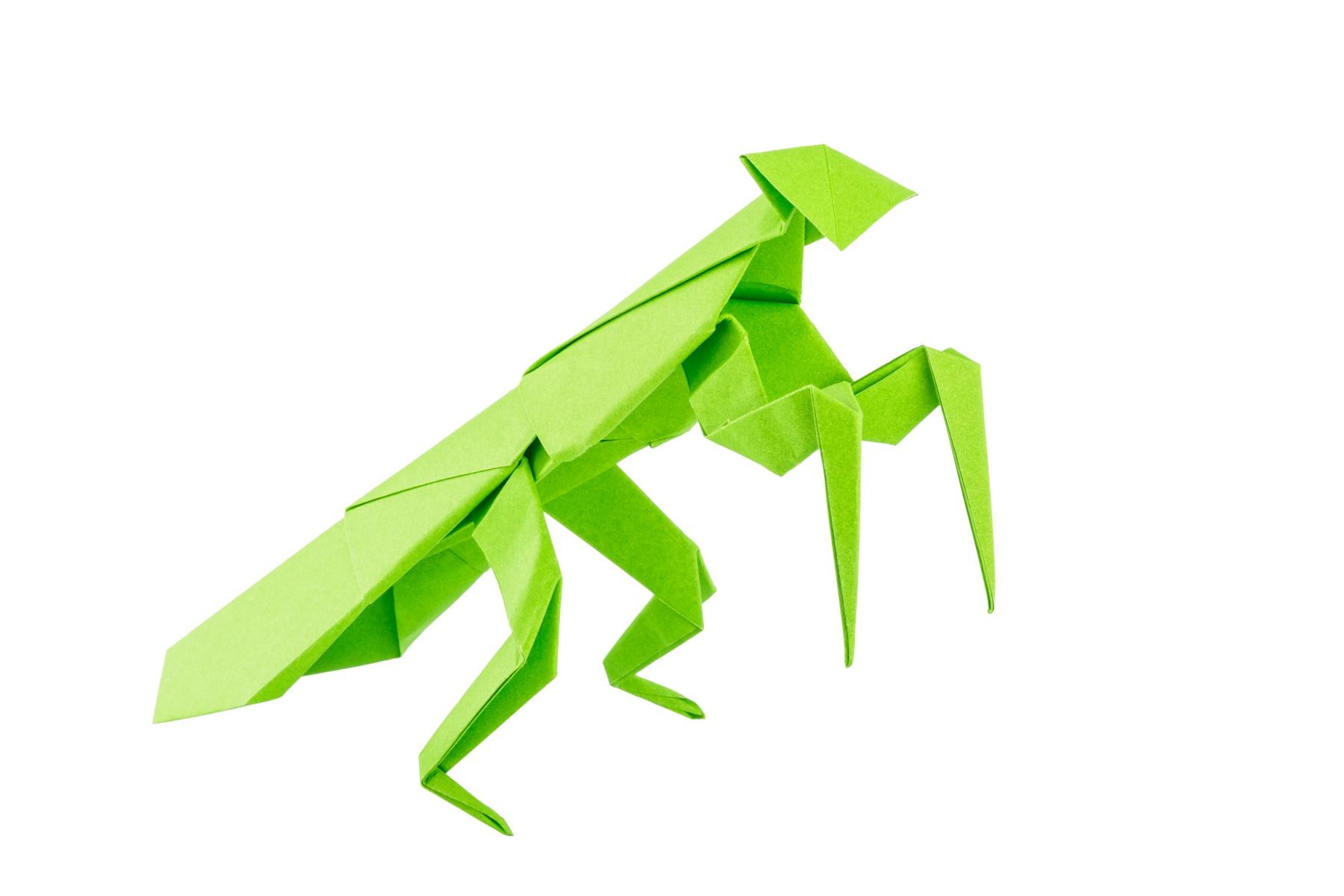 Origami Dragon (Jo Nakashima) - YouTube | 1200x1800